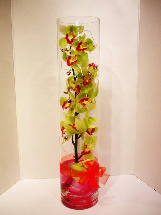 Orchids in glass cylinder