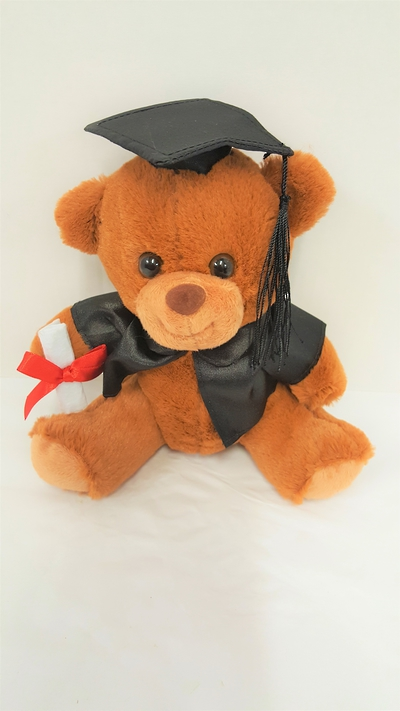 Gradution Bear